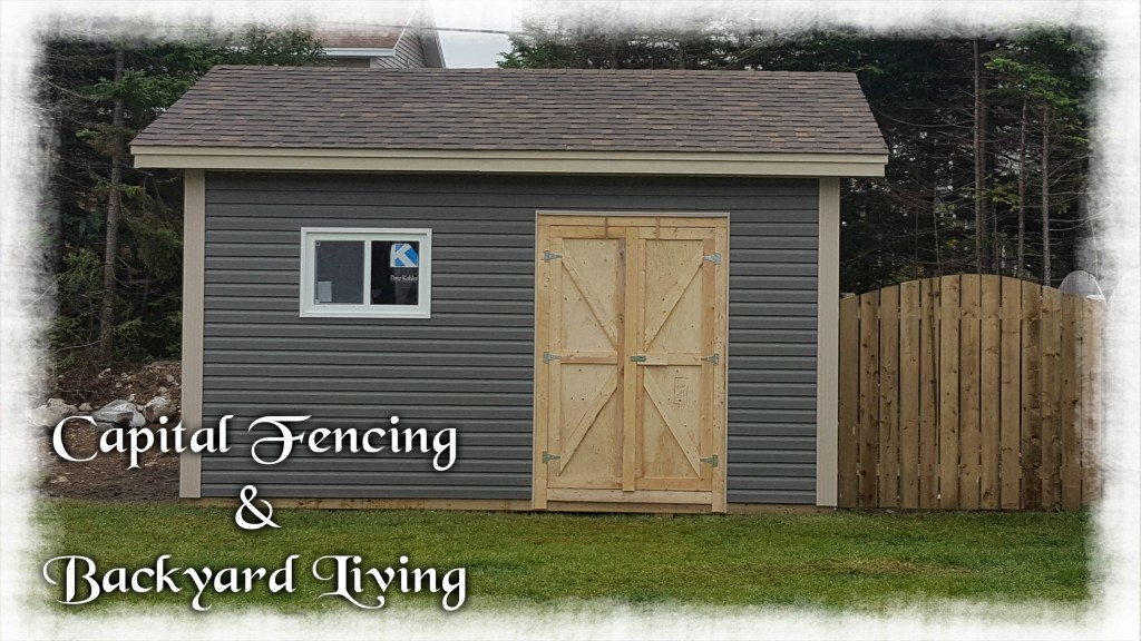 14X16 Shed