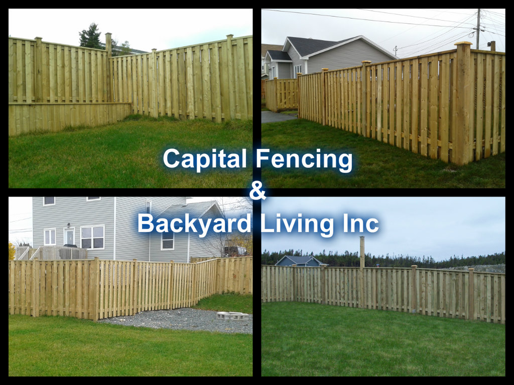 fences capital fencing and backyard living